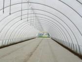 Agrivelo plėvelė 30 (3.2 x 250 m