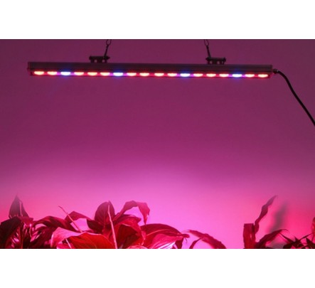 LED lempa