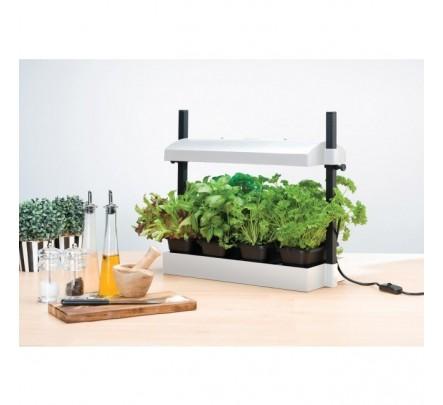 """""""Micro Grow Light Garden"""" daigykla 11W Balta"""