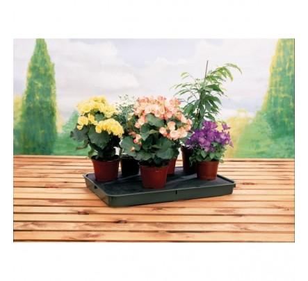 Augalų laistymo padėklas 56 x 40 cm