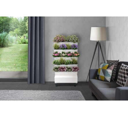 Automatinė augalų laistymo lentynėlė