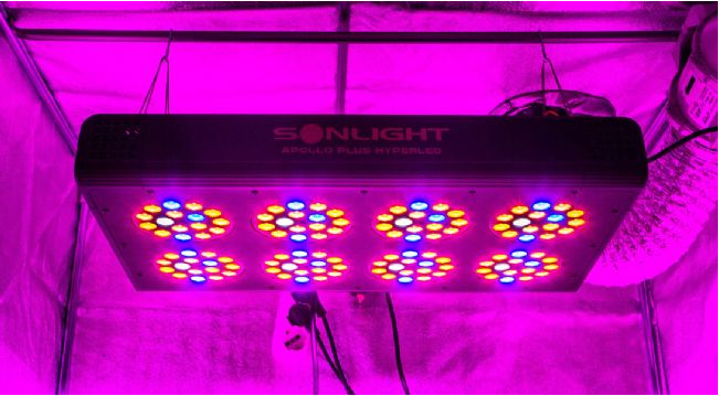 Led Apollo PLUS Hyperled Sonlight 4 (64x3w) 192W - Agro
